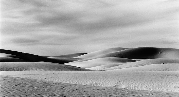 Dune Enigma c2012 selenium toned silver gelatin print. Mesquite Flat Dunes at Stovepipe wells, Death Valley, CA